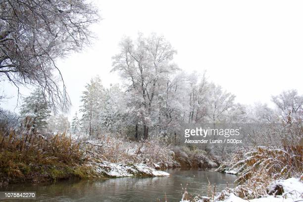 cold river - lunin stock photos and pictures