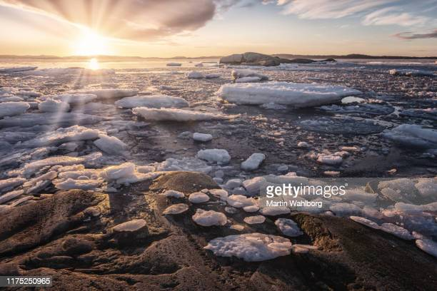 cold sunset by the sea - ice floe stock pictures, royalty-free photos & images