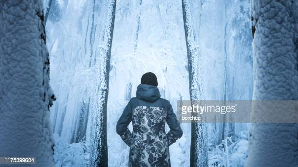 cold winter walk - wonderlust stock pictures, royalty-free photos & images