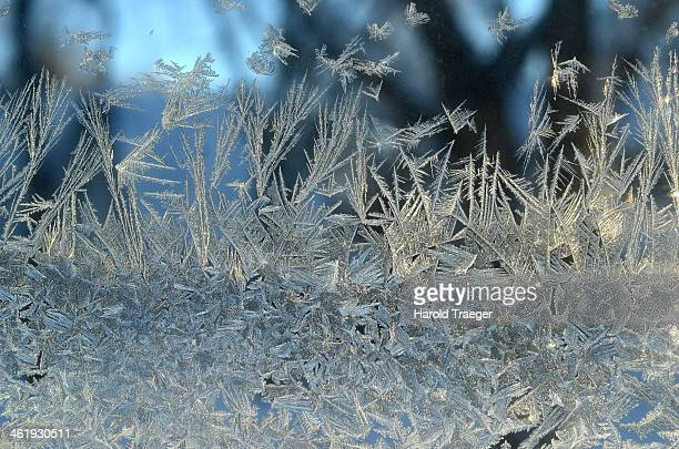 Cold, winter weather creates artistic frost patterns on glass window. Out of focus trees and sky in background.