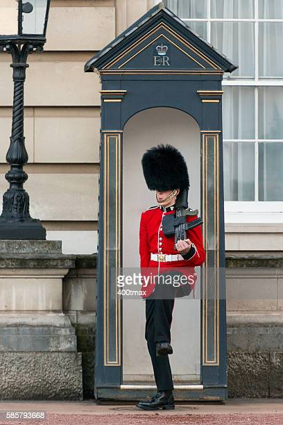 coldstream guard - bearskin hat stock pictures, royalty-free photos & images