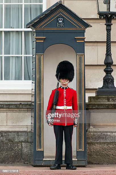 coldstream guard - honor guard stock pictures, royalty-free photos & images
