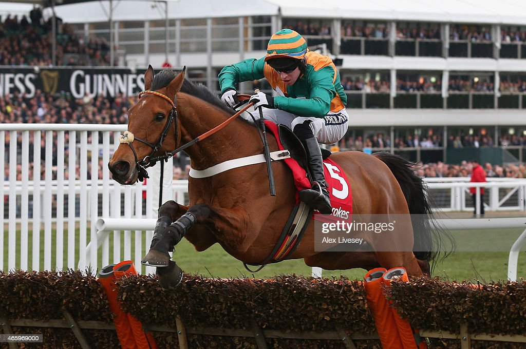 Cheltenham Festival - St Patrick's Thursday : News Photo