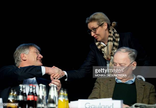 Coleader of the Alternative for Germany farright party Alexander Gauland looks on as AfD coleader and top candidate for European elections Joerg...
