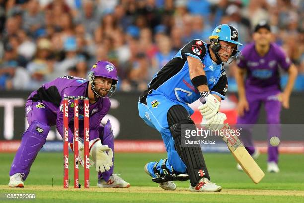 Colin Ingram of the Adelaide Strikers bats during the Big Bash League match between the Adelaide Strikers and the Hobart Hurricanes at Adelaide Oval...