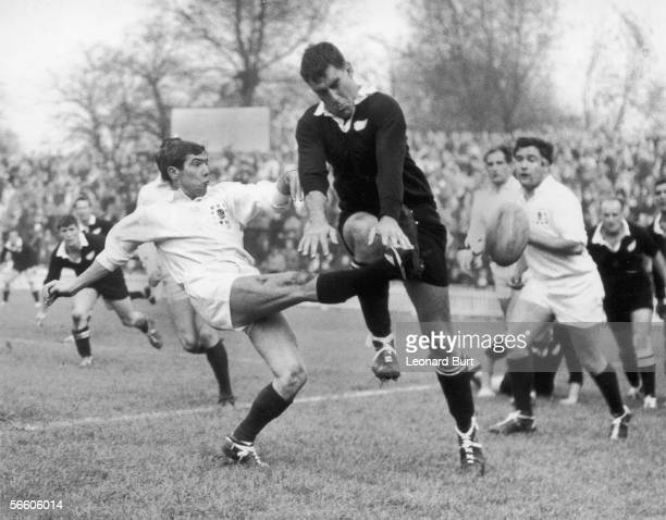 Colin Meads of the All Blacks attempts to charge down a kick by Midlands and England scrumhalf Bill Gittings during a match at Leicester 28th October...