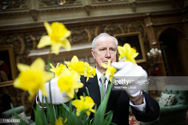 Colin the butler tends to some flowers in Highclere Castle on March 15 2011 in Newbury England Highclere Castle has been the ancestral home of the...