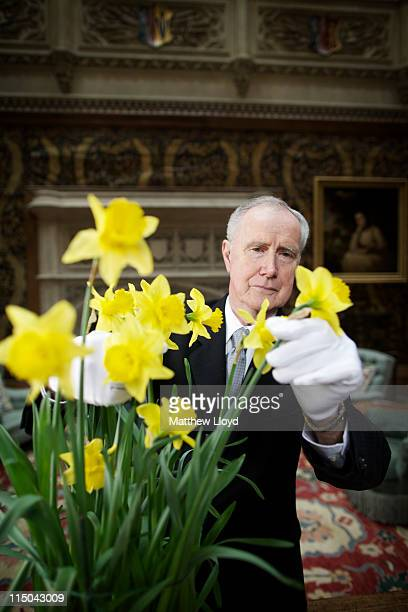 Colin the butler tends to some flowers in the saloon at Highclere Castle on March 15 2011 in Newbury England Highclere Castle has been the ancestral...