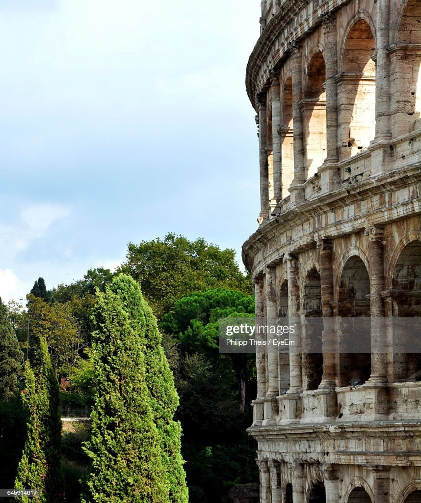 Coliseum By Trees Against Sky : Stock Photo