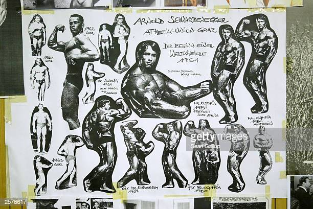 A collage depicting current California Governor Arnold Schwarzenegger's weightlifting career hangs on the wall of a gym run by his former coach Kurt...