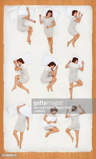 collage of various sleeping positions - position stock-fotos und bilder