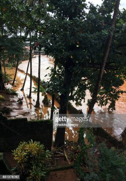 A collapsed tree is seen through floodwaters in an area of Freetown after landslides struck the capital of the west African state of Sierra Leone on...