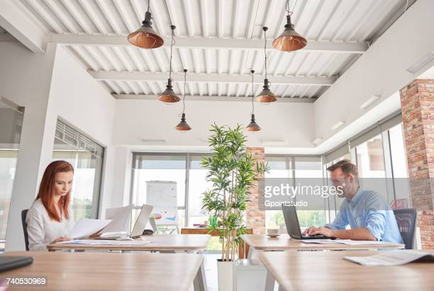 Colleagues in office working at desks