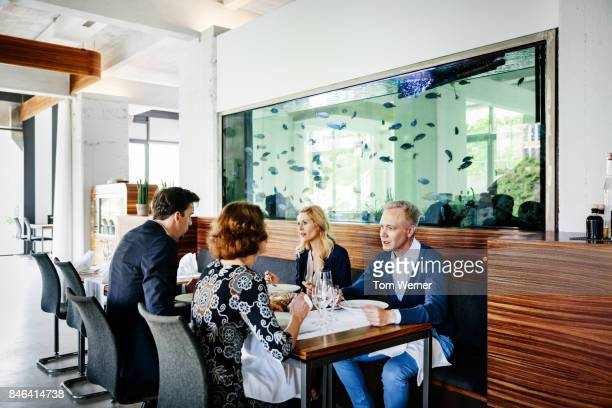 colleagues sitting beneath large fish tank in contemporary restaurant eating lunch - big tom stock pictures, royalty-free photos & images