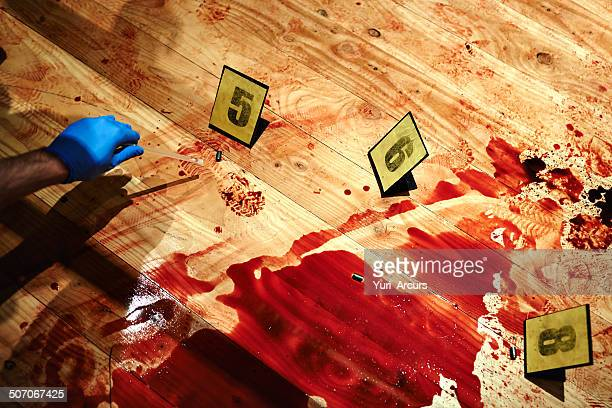 collecting bloody evidence - bloody gore stock pictures, royalty-free photos & images