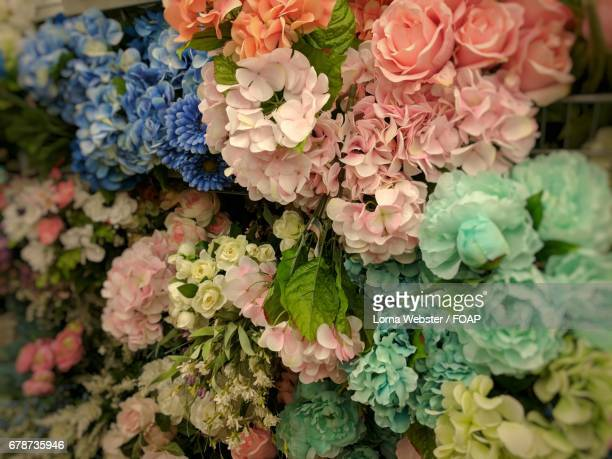 collection of artificial flowers - the webster stock pictures, royalty-free photos & images