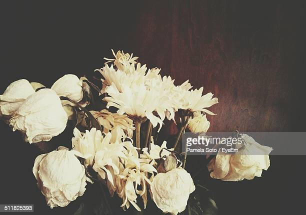 A collection of dying flowers
