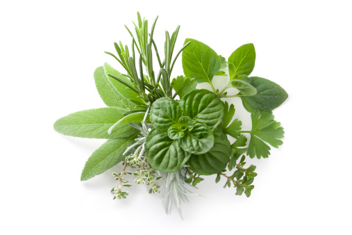 Collection of fresh herbs 183808249
