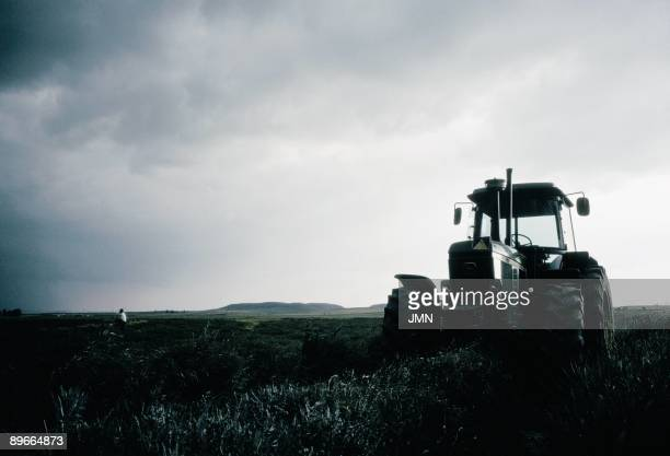 Collection of grass Near a tractor a man picks up undergrowths of grass in a field of San Cebrian de Mazote Valladolid province
