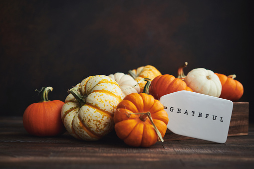 Collection of miniature pumpkins in wooden crate with GRATEFUL message for Fall and Thanksgiving 1272718036