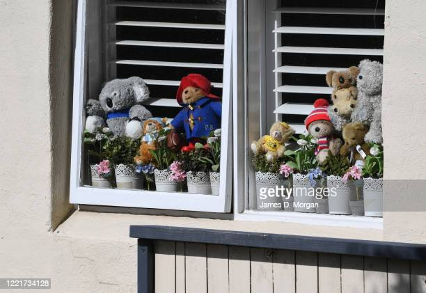 """Collection of teddy bears sits inside a window at a house on the Lower North Shore area as part of a worldwide """"bear hunt"""" to entertain children..."""