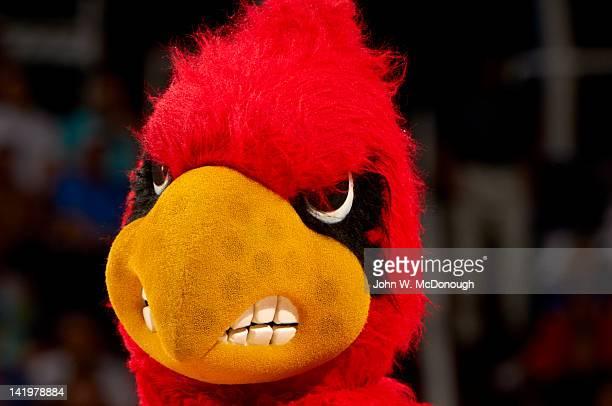 NCAA Playoffs Closeup portrait of Louisville Cardinals mascot Cardinal Bird during game vs Florida at US Airways Center Phoenix AZ CREDIT John W...