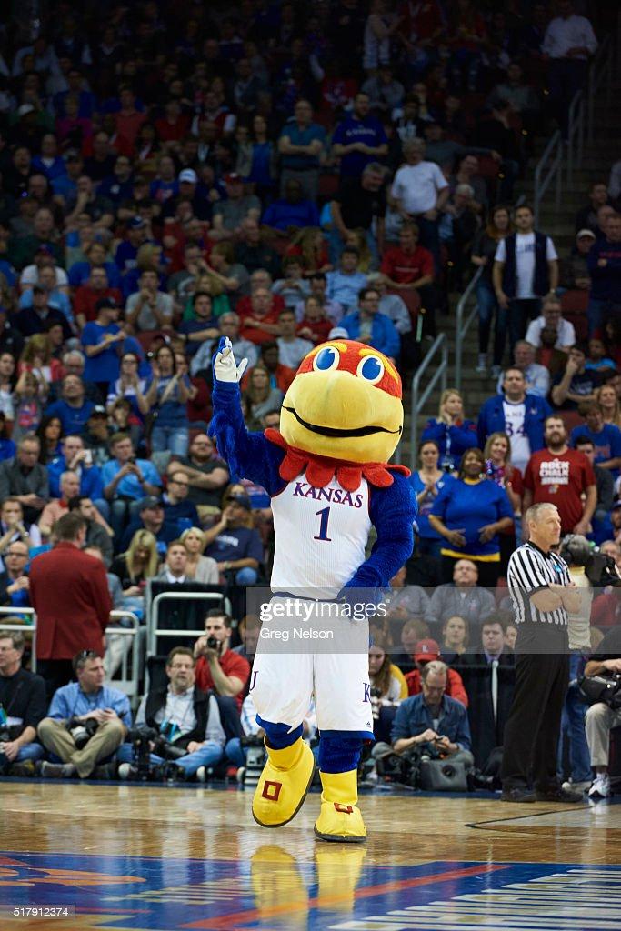 Big Jay, The Kansas Jayhawks mascot performs during a