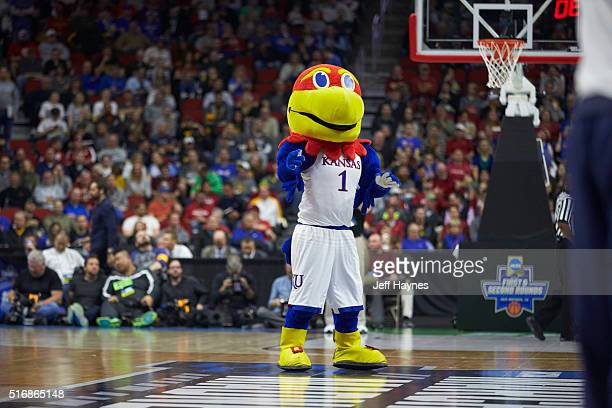 NCAA Playoffs Kansas mascot Big Jay on court during game vs UConn at Wells Fargo Arena Des Moines IA CREDIT Jeff Haynes