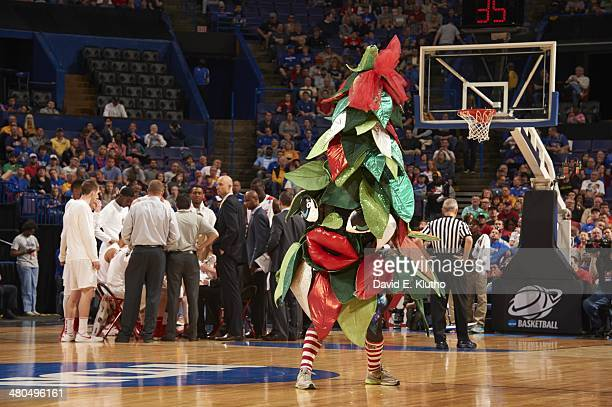 NCAA Playoffs Stanford Cardinal mascot The Tree on court during game vs New Mexico at Scottrade Center St Louis MO CREDIT David E Klutho