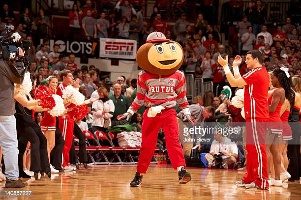 Ohio State mascot Brutus Buckeye on court with cheerleaders during game vs Michigan State at Value City Arena at Jerome Schottenstein Center Columbus...