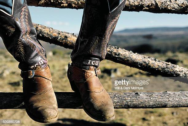 college cowboy boots - fort worth stock pictures, royalty-free photos & images