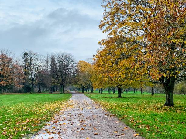 College Field at Eton College