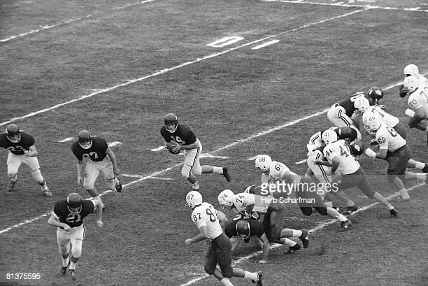 College Football Cotton Bowl Arkansas QB Fred Marshall in action vs Nebraska Dallas TX 1/1/1965