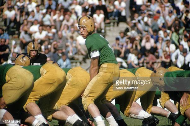 Notre Dame QB Ralph Guglielmi calling signals before snap during spring football game at Notre Dame Stadium South Bend IN CREDIT Mark Kauffman