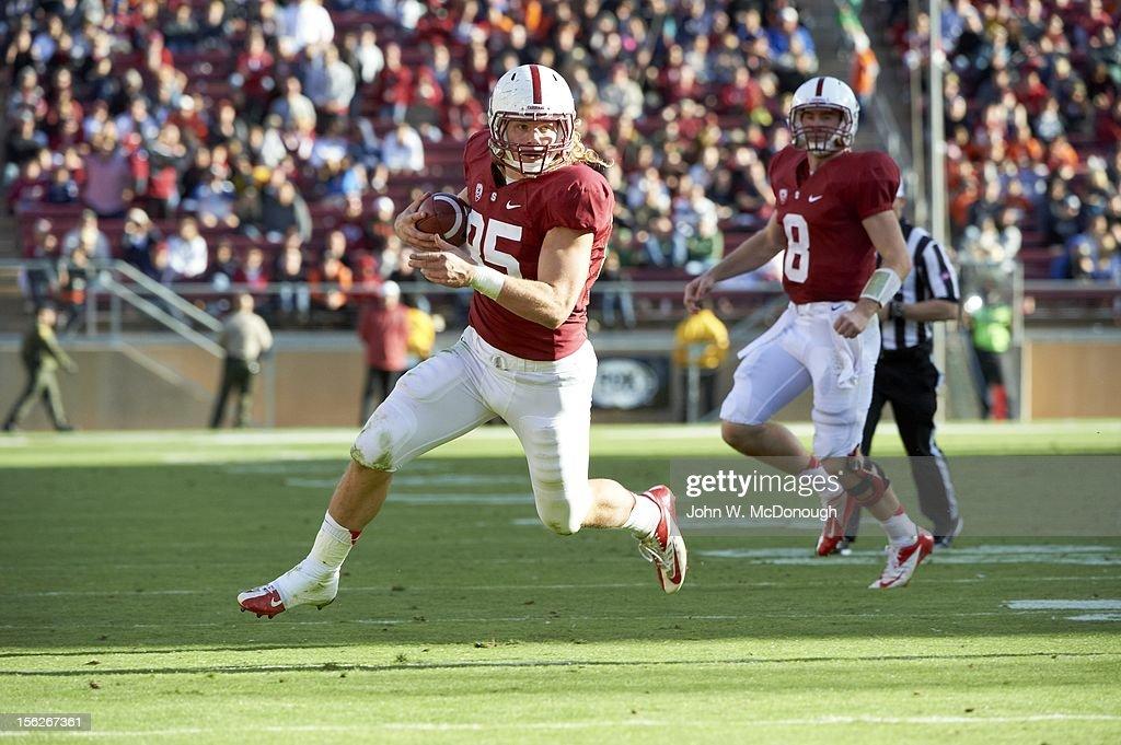 Stanford Ryan Hewitt (85) in action, rushing vs Oregon State at Stanford Stadium. John W. McDonough F575 )