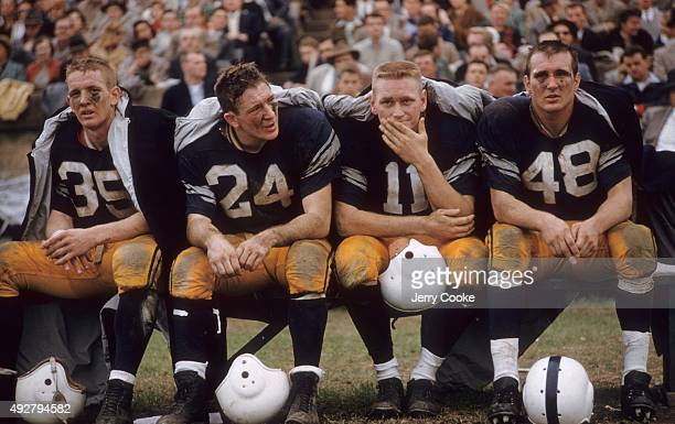 Yale football team on the bench Curtis Coker Dennis McGill G Dean Loucks and Alfred Ward during game against Dartmouth at the Yale Bowl New Haven CT...