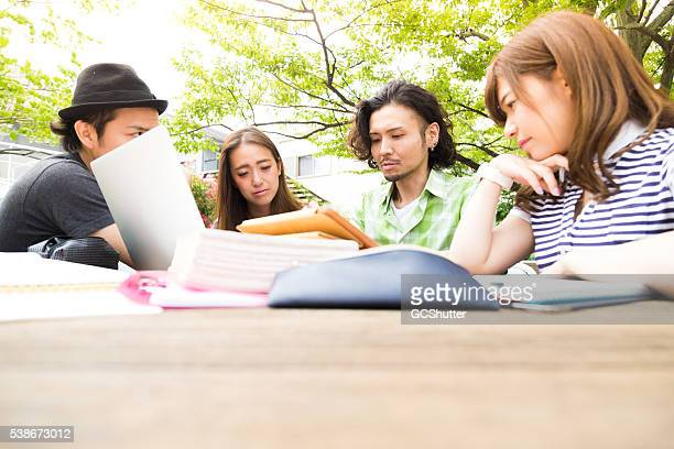 College Group of Friends Studying Outdoor