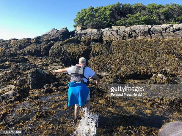 College Island Chuck Radis splashes onto seaweedcovered ledges at low tide on College Island on the tip of Long Island in Casco Bay Visiting remote...