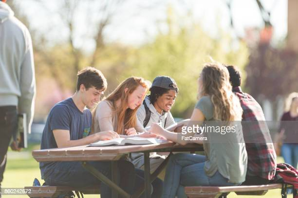college students hang out in between classes and study at a picnic table - picnic table stock pictures, royalty-free photos & images