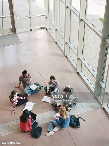 College students having group discussions, elevated view