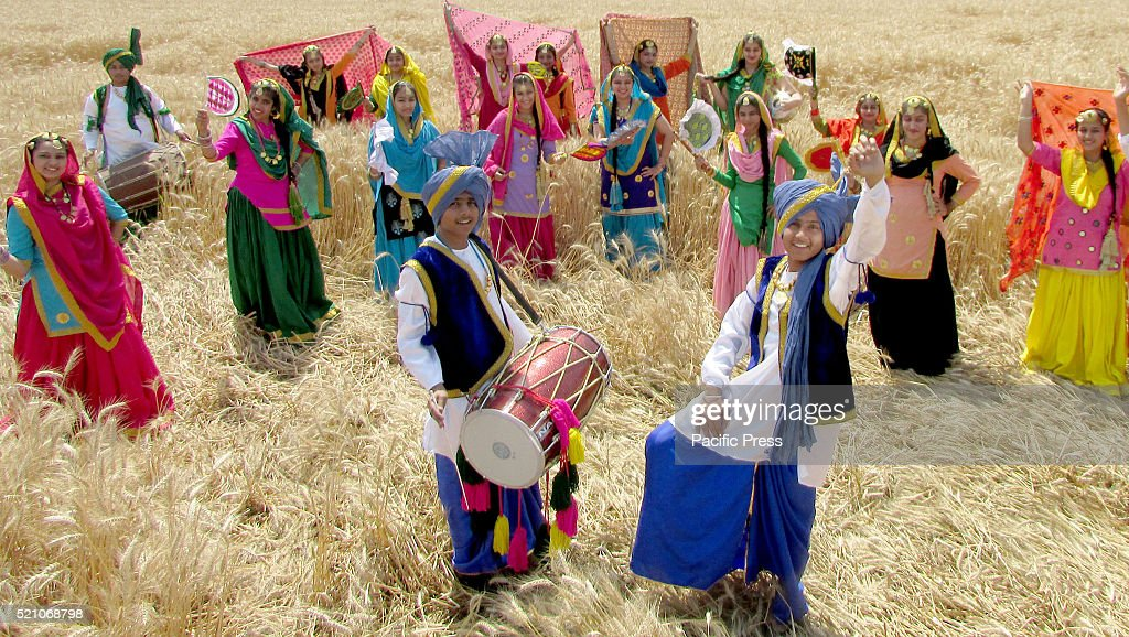 College students perform the `Bhangra` a Punjabi folk dance in a filed of Wheat on the eve of Vaisakhi at village Baran Sirhind road Vaisakhi is the..