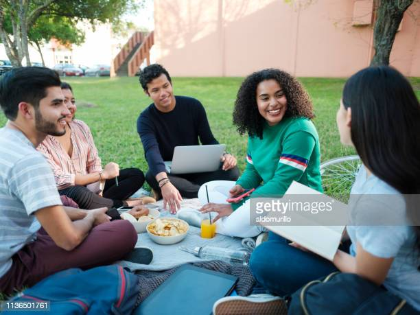 college study group having a picnic - mexican picnic stock pictures, royalty-free photos & images