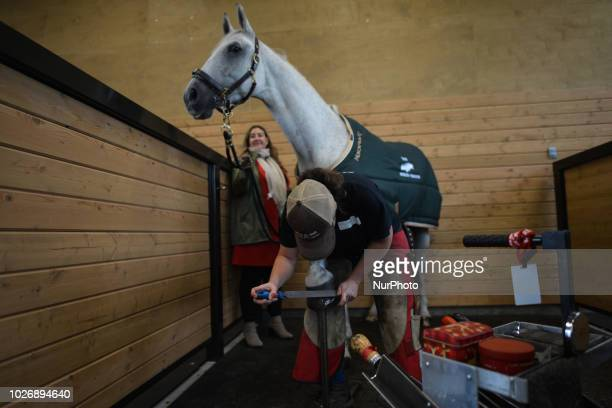 Collette a member of the Spruce Meadows staff finishes trim and smooth out edges of hoof inside the newly opened Spruce Meadows Farrier Shop on the...