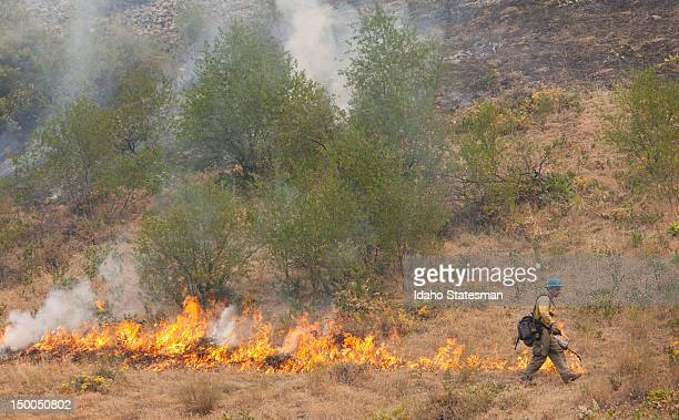 Collin Good with Boise National Forest Engine 451 sets a back burn along Highway 55 to secure the fire line near Banks Idaho August 8 2012 The more...