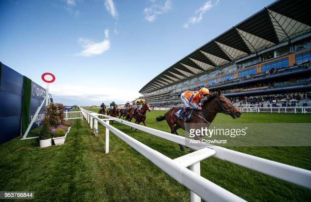 Colm O'Donoghue riding Torcedor lead all the way to win The Longines Sagaro Stakes at Ascot racecourse on May 2 2018 in Ascot England