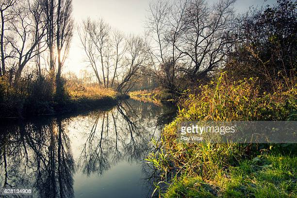 colne brook at sunrise - berkshire england stock pictures, royalty-free photos & images