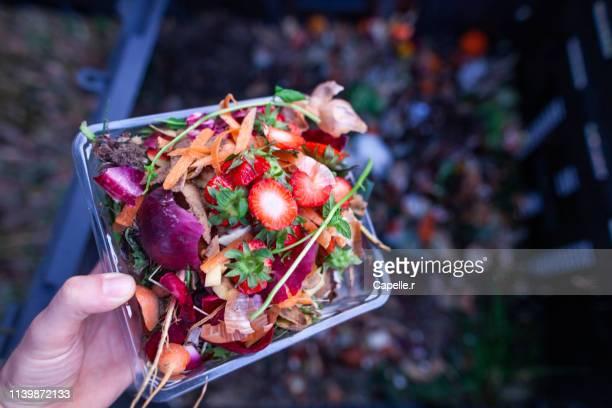 écologie - composter ses déchets verts - humus photos et images de collection