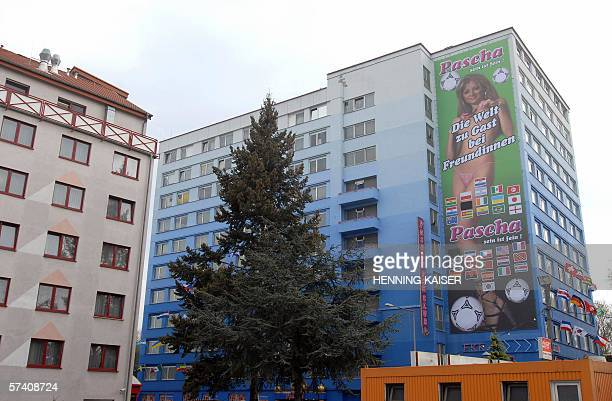 Giant billboard advertising a brothel, features a scantily-clad woman posing with footballs behind a slightly altered Football World Cup slogan , and...