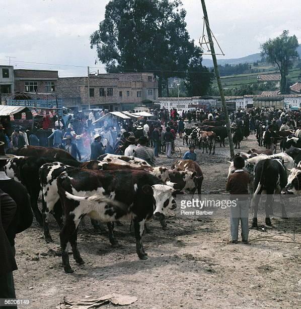 Colombia Cattle market 1978