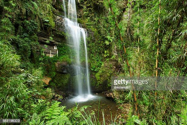 colombia, cundinamarca, las tapias, waterfall el chiflon - cundinamarca stock pictures, royalty-free photos & images